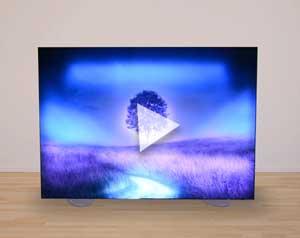 tree video image